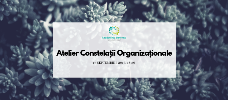 Atelier Constelații Organizaționale - 17 Septembrie 2019