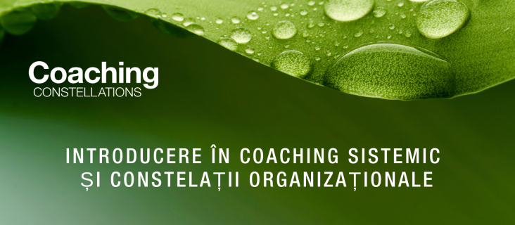 Introducere in Coaching Sistemic si Constelatiii Organizationale