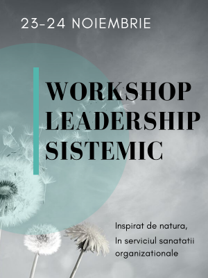 Workshop Leadership Sistemic